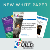 White Paper and Infographic Examine Games and Gamification